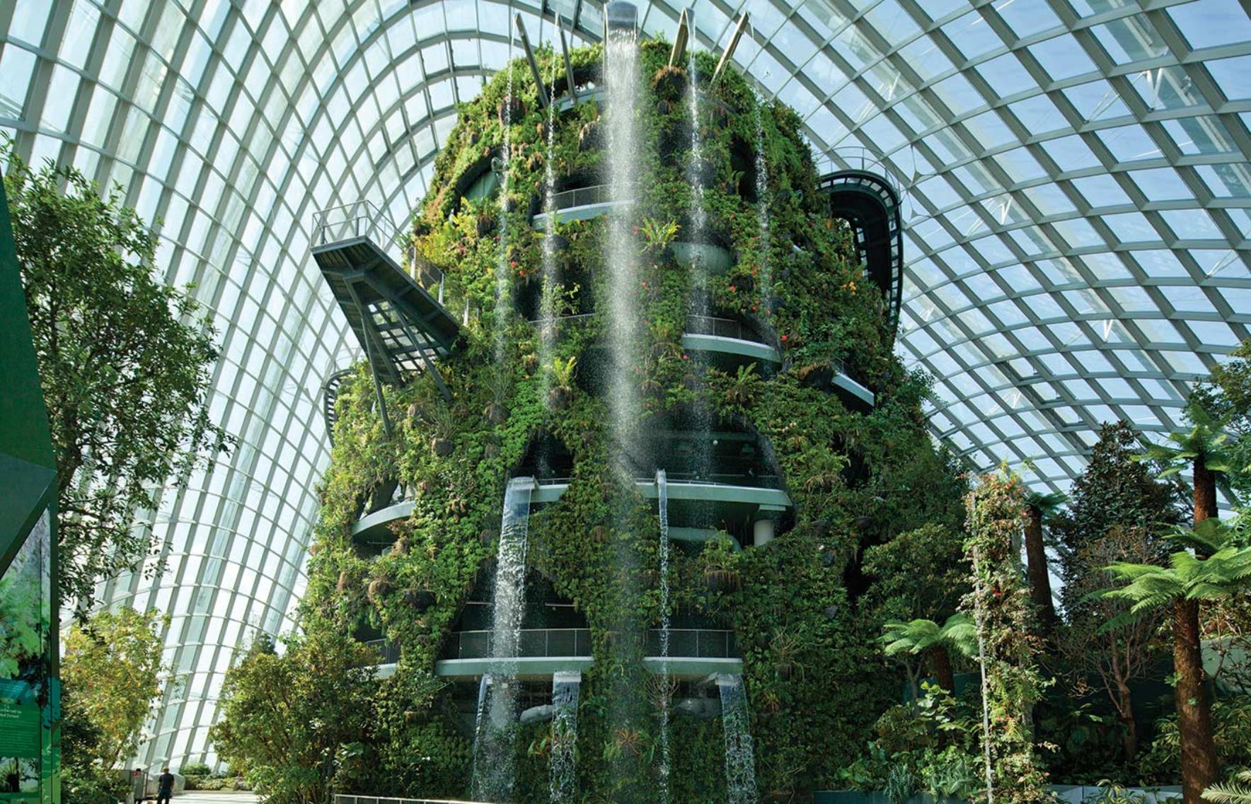Cooled conservatories gardens by the bay wilkinsoneyre for Architecture futuriste ecologique