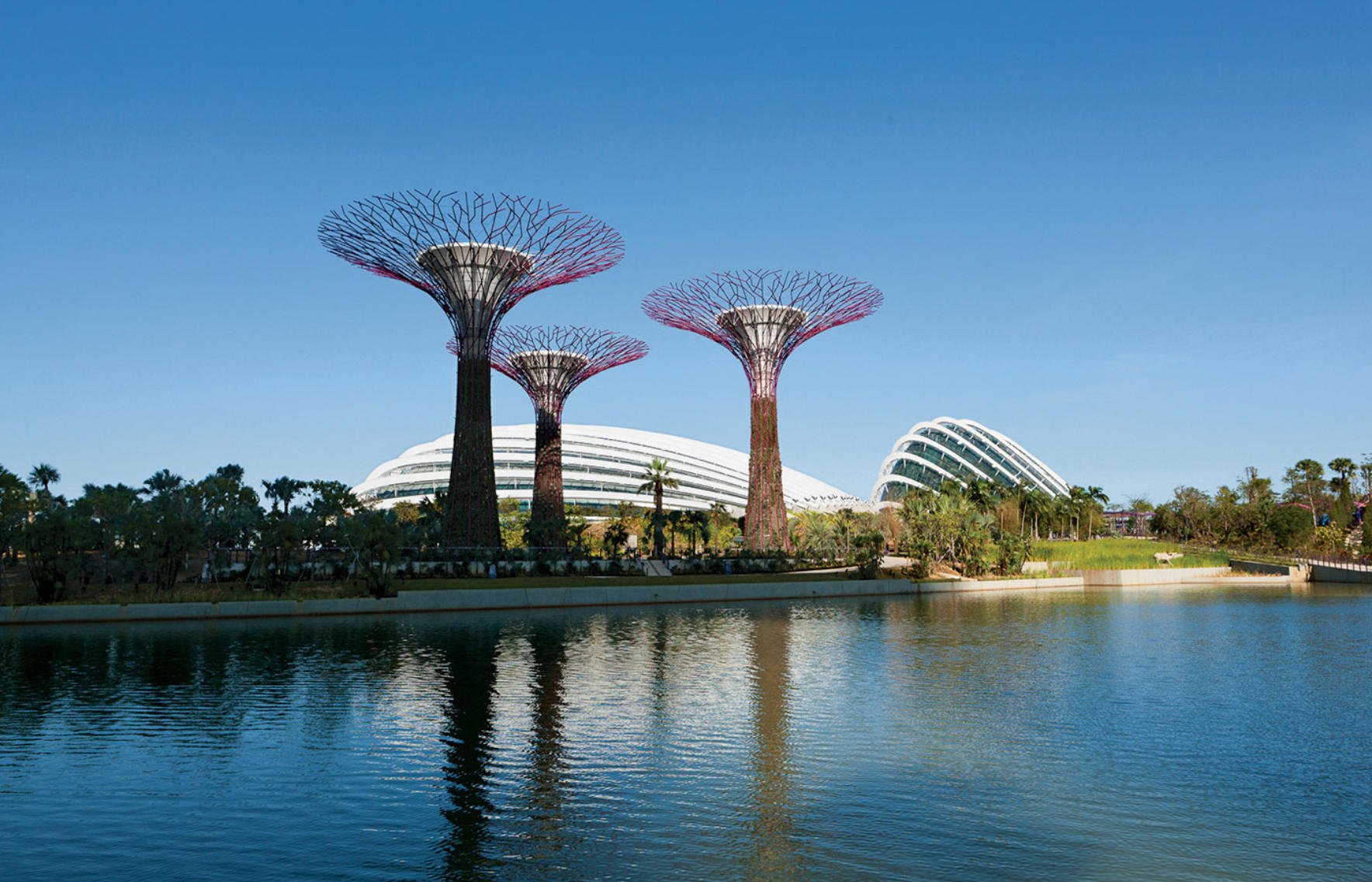 Cooled Conservatories Gardens By The Bay Wilkinsoneyre